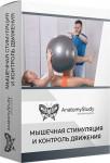 Мышечная стимуляция и контроль движения