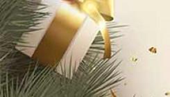 Подарки Елены Поздеевой на Новый год